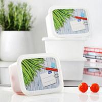 Gefrierdose 4-TLG - Weiß, Basics, Kunststoff (15,7/11,8/13,2cm) - Rotho
