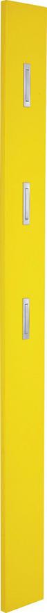 GARDEROBENPANEEL Hochglanz Gelb - Gelb, Design (15/170/4cm) - Xora