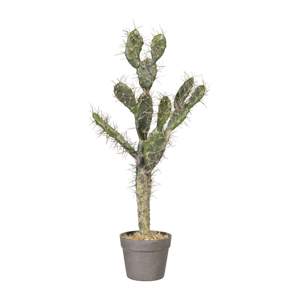 XXXLutz Kunstpflanze kaktus