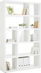REGÁL - bílá/barvy hliníku, Design, dřevěný materiál/umělá hmota (123/203/35cm)