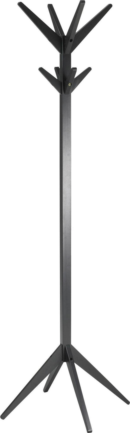 KLEIDERSTÄNDER Schwarz - Schwarz, LIFESTYLE, Holz (45/178/45cm) - Carryhome
