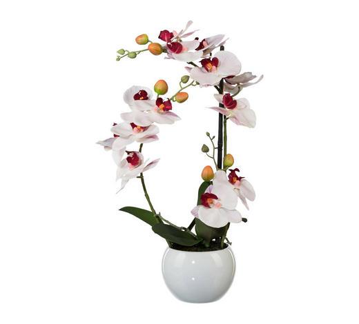 KUNSTBLUME Orchidee  - Dunkelgrün/Rosa, Kunststoff (42cm)