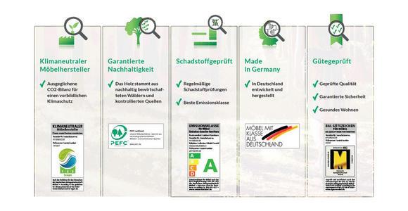 WOHNWAND Asteiche massiv Schlammfarben, Eichefarben  - Schlammfarben/Eichefarben, Natur, Glas/Holz (297/185/54cm) - Valnatura
