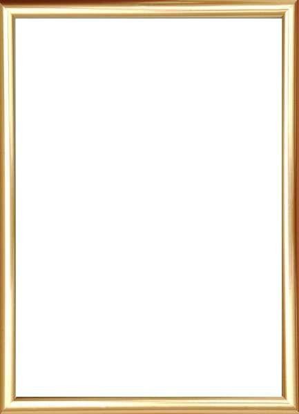BILDERRAHMEN in Goldfarben - Goldfarben, Basics, Glas/Kunststoff (25/31cm)