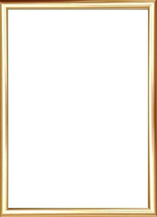 BILDERRAHMEN  Goldfarben - Goldfarben, Basics, Glas/Kunststoff (25/31cm)