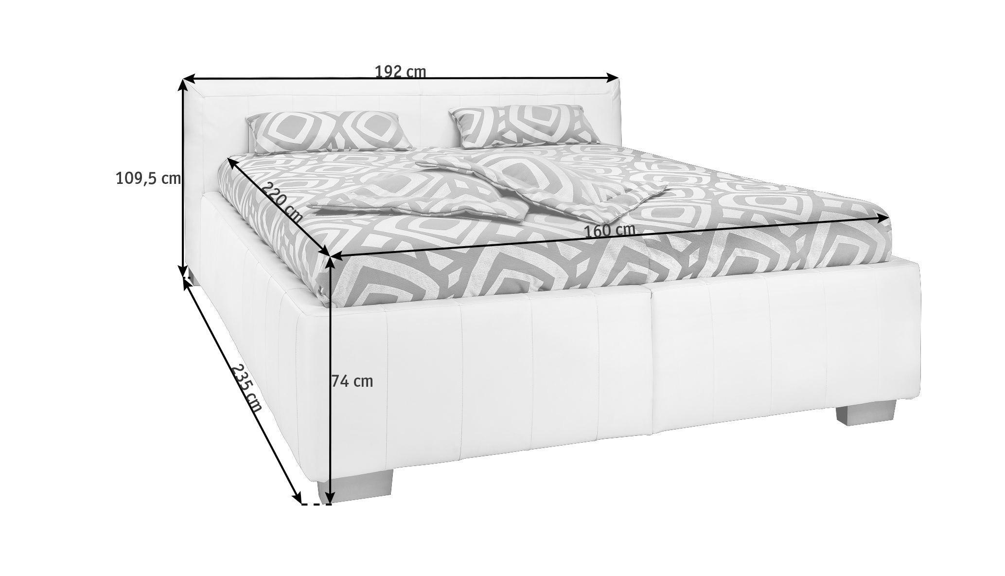 POLSTERBETT 160/220 cm - Silberfarben/Weiß, KONVENTIONELL, Leder/Holz (160/220cm) - ADA AUSTRIA