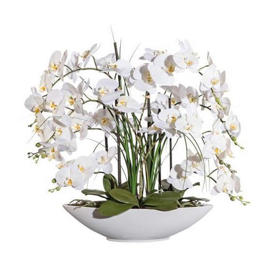 KUNSTBLUME Orchidee - Weiß/Grün, LIFESTYLE, Keramik/Kunststoff (70cm)