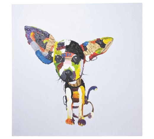 ÖLGEMÄLDE Tiere  - Multicolor, Design, Textil (100/100/4cm) - Kare-Design