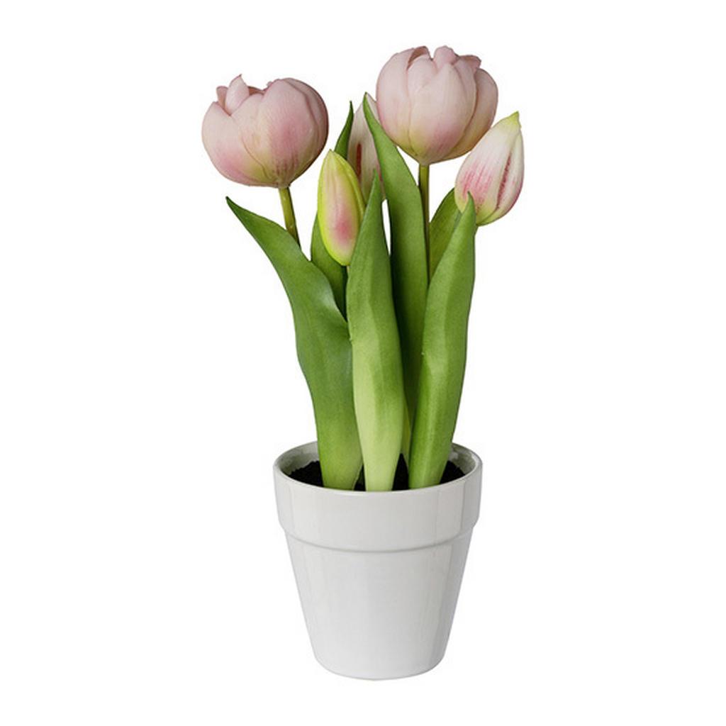 XXXLutz Kunstpflanze tulpe