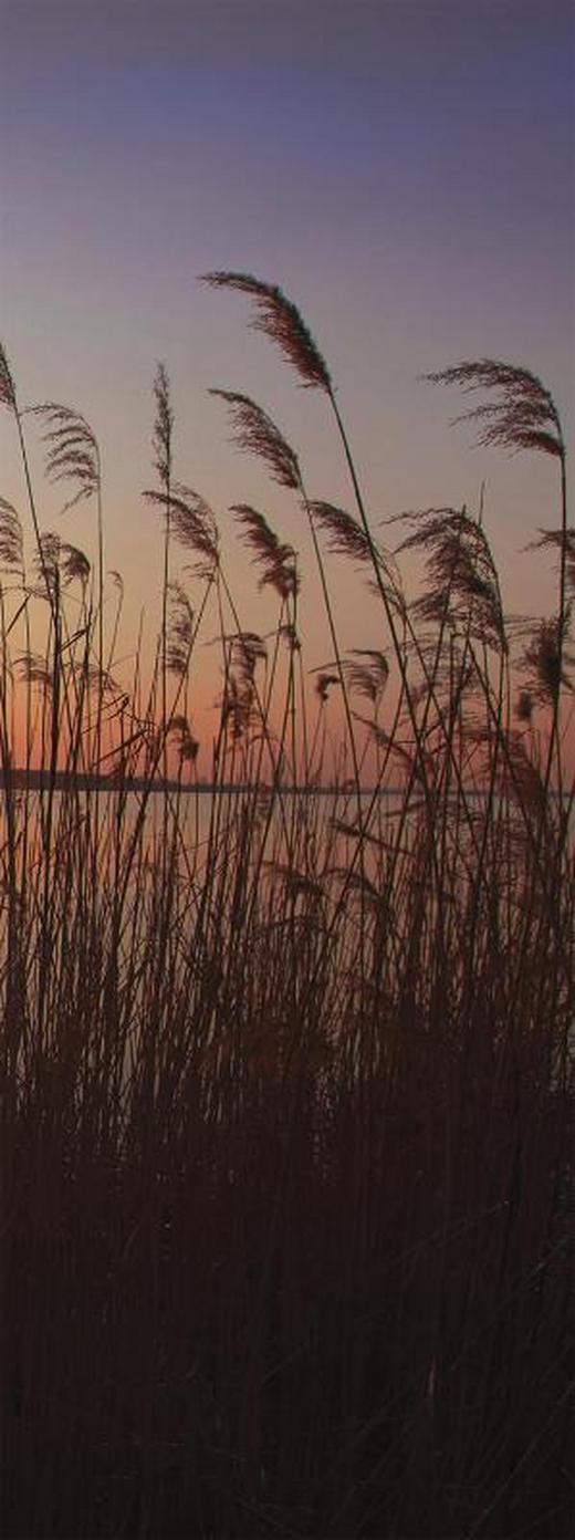 Landschaft & Natur KEILRAHMENBILD - Multicolor, KONVENTIONELL, Holz/Papier (30/80/3cm)