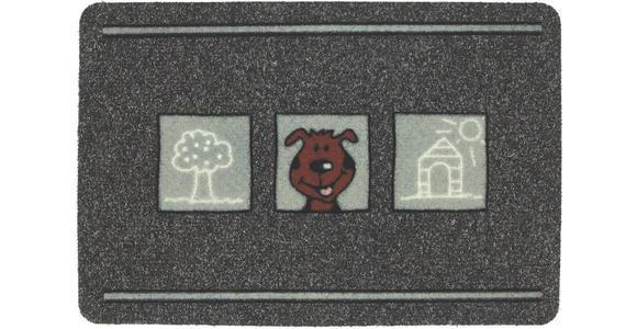 FUßMATTE 40/60 cm  - Grau, Trend, Textil (40/60cm) - Esposa