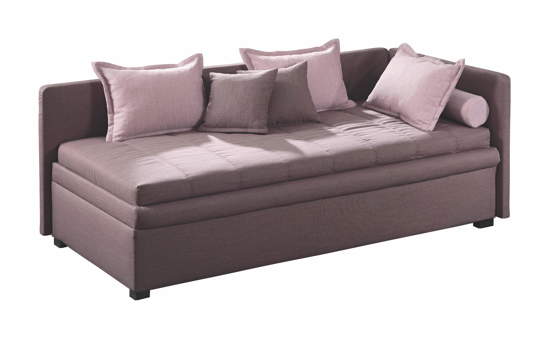 LIEGE Braun - Schwarz/Braun, MODERN, Kunststoff/Textil (90/200cm) - ESPOSA
