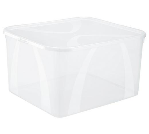 BOX S VÍKEM, 25 l - přírodní barvy, Konvenční, umělá hmota (42/35,1/23cm) - Rotho