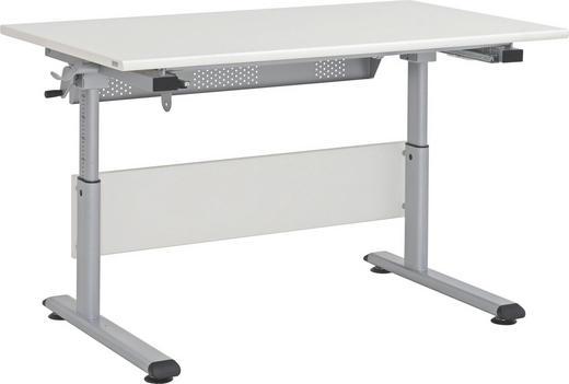 JUGENDSCHREIBTISCH - Beige/Silberfarben, Basics, Holzwerkstoff/Metall (120 53-79 70cm) - Paidi