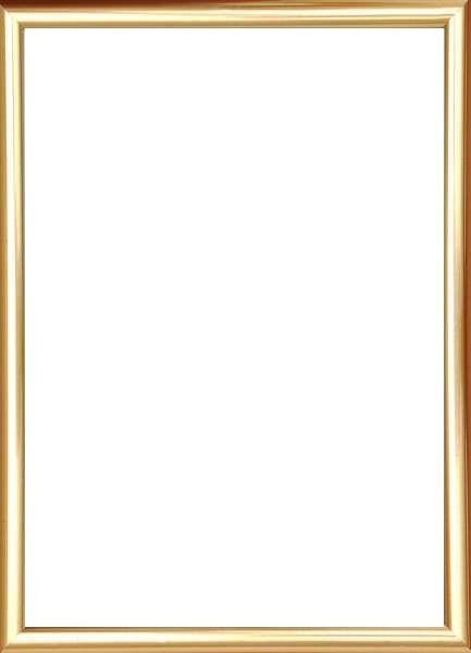 BILDERRAHMEN  Goldfarben - Goldfarben, Basics, Glas/Kunststoff (31/22/1.75cm)