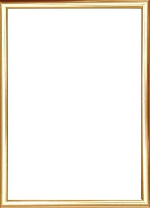RÁM NA OBRAZY - barvy zlata, Basics, umělá hmota/sklo (16/11/1.75cm)