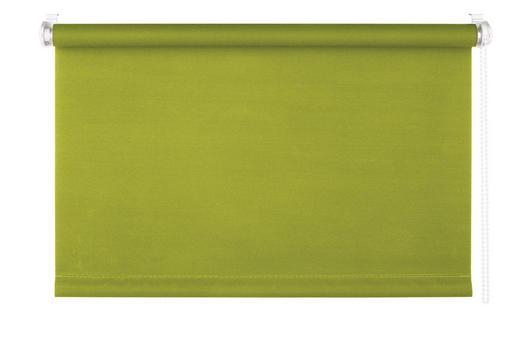 ROLLO    60/160 cm - Grün, Basics, Kunststoff (60/160cm) - HOMEWARE