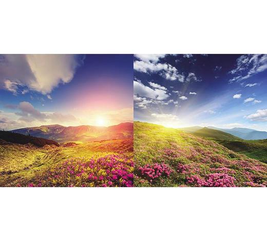 GLASBILD - Multicolor, Natur, Glas (20/40/1,40cm)