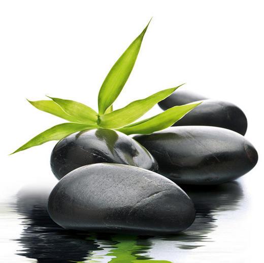 Blätter, Steine, Wasser Glasbild