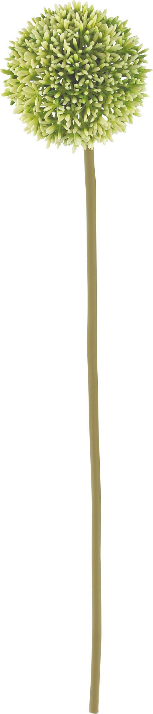 Serie Allium - creme/brun, Basics, textil/plast (67cm)