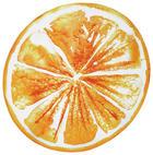 STRANDTUCH - Orange, Design, Textil (165cm) - Esposa