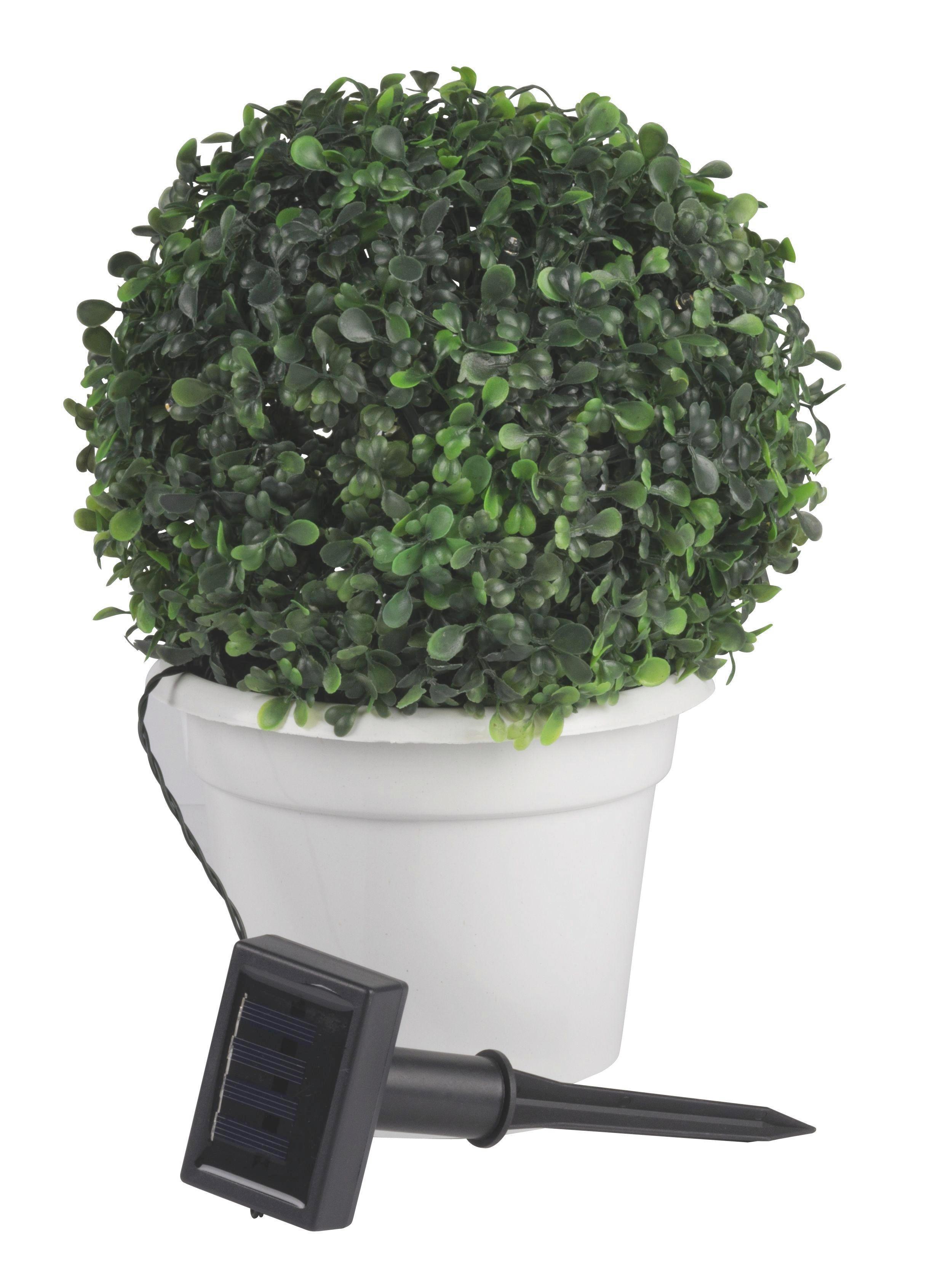 SOLAR DEKOLEUCHTE - Grün, Kunststoff (24/31cm)