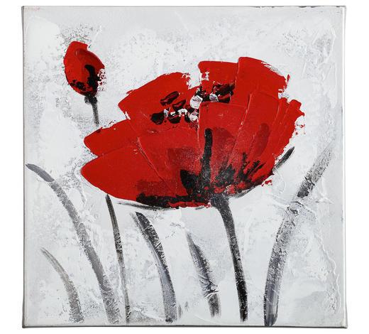 ÖLGEMÄLDE - Rot/Weiß, Basics, Holz/Textil (30/30cm) - Monee