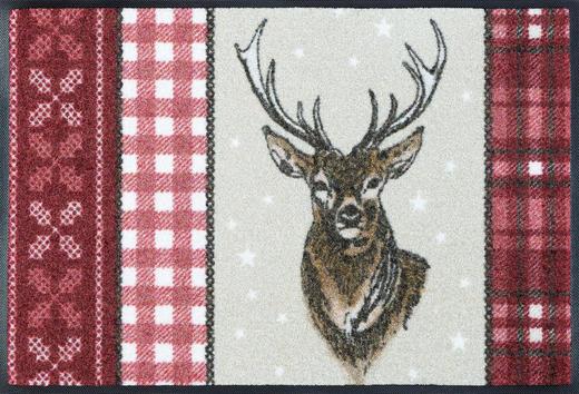 FUßMATTE 50/75 cm Tier Multicolor - Multicolor, Basics, Kunststoff/Textil (50/75cm) - Esposa