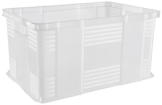 BOX - Transparent, Basics, Kunststoff (39/31/59cm) - ROTHO