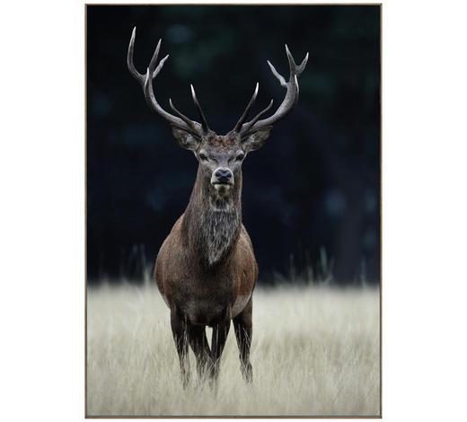 BILD - Multicolor, LIFESTYLE, Holzwerkstoff (70/50/2cm) - Reinders Next