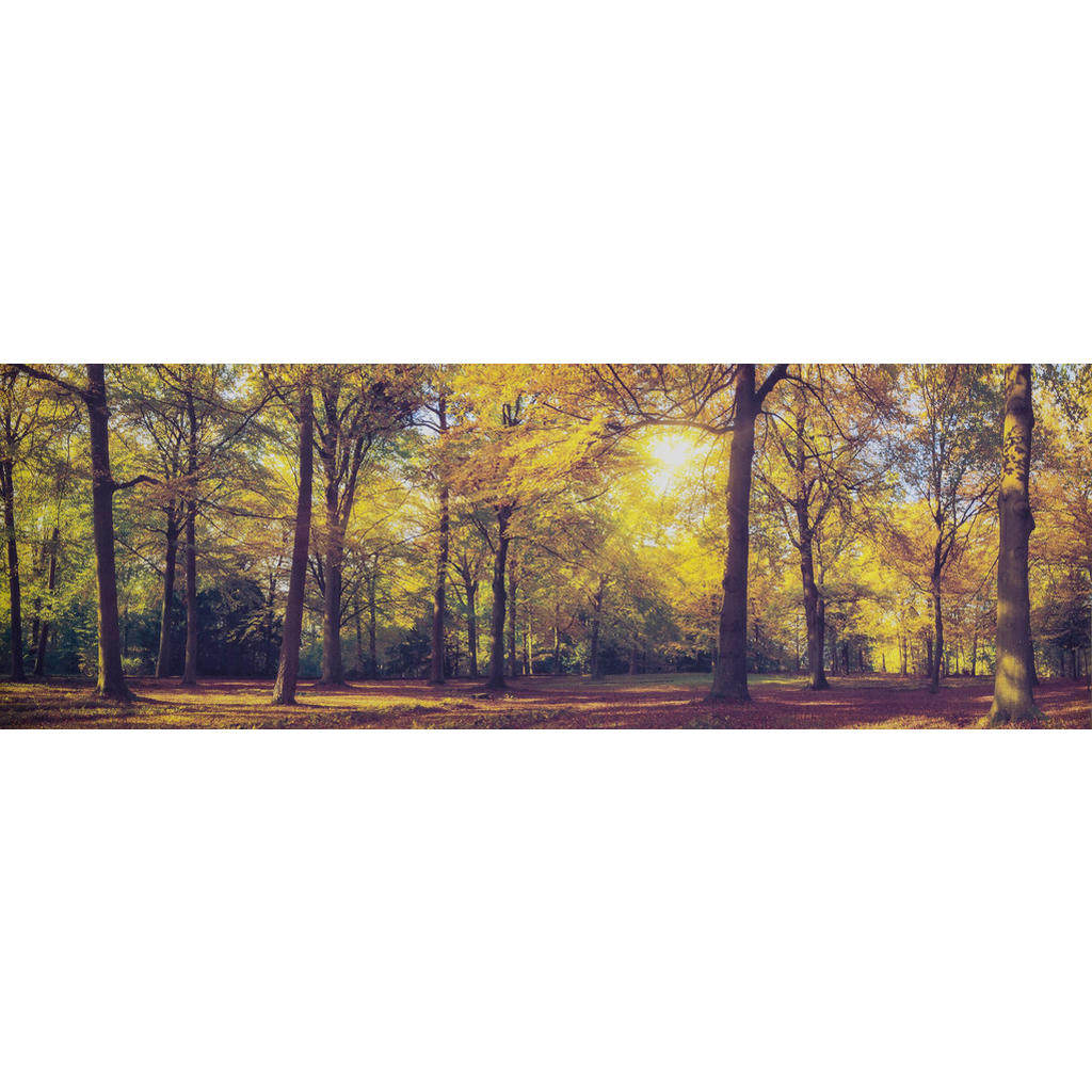 XXXLutz Keilrahmenbild bäume