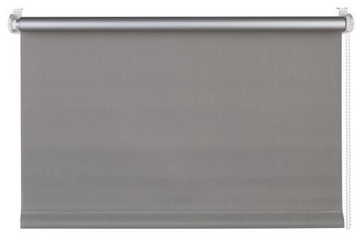 ROLLO  blickdicht   60/160 cm - Grau, Design, Textil (60/160cm) - Homeware