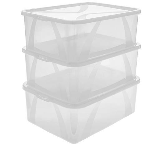 BOX MIT DECKEL 36,3/26,6/19,2 cm - Transparent, Basics, Kunststoff (36,3/26,6/19,2cm) - Rotho