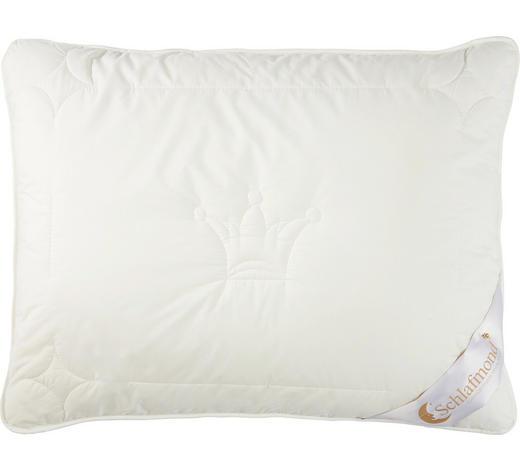 POLSTER 60/80 cm  - Champagner, Basics, Textil (60/80cm) - Schlafmond
