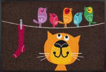 FUßMATTE 50/75 cm Katze Braun, Multicolor  - Multicolor/Braun, Basics, Kunststoff/Textil (50/75cm) - Esposa