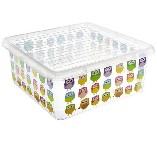 BOX MIT DECKEL 39/39/17 cm  - Transparent/Multicolor, Basics, Kunststoff (39/39/17cm) - Plast 1