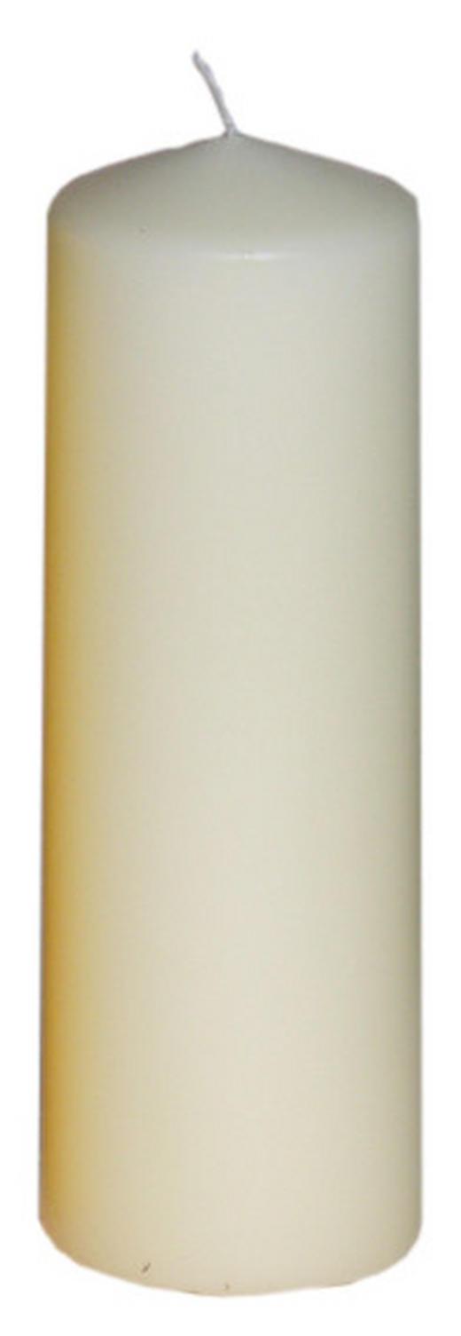 STUMPENKERZE 6,7/20 cm - Champagner, Basics (6,7/20cm) - Steinhart