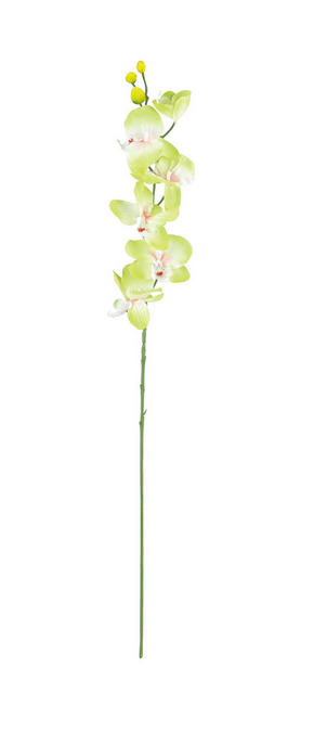KONSTGJORD BLOMMA - grön, Basics, textil/plast (72cm)