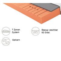GELSCHAUMMATRATZE Primus 250 90/200 cm 20 cm - Dunkelgrau/Weiß, Basics, Textil (90/200cm) - Schlaraffia