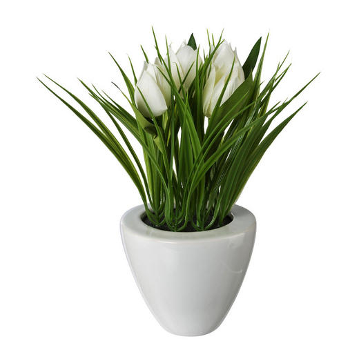 KUNSTBLUME Tulpe - Weiß/Grün, Trend, Kunststoff (26cm)