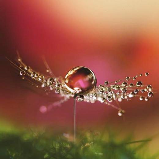 GLASBILD - Multicolor, KONVENTIONELL, Glas (30/30cm) - EUROGRAPHICS