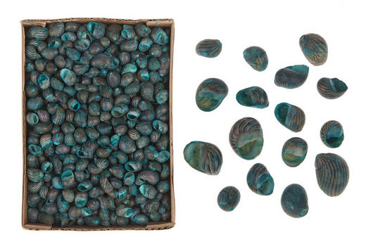DEKOMUSCHEL - Türkis/Blau, Trend (1,13kg)