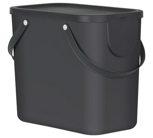 ABFALLSAMMLER 25 L l - Dunkelgrau, Basics, Kunststoff (40/23,5/34cm) - Rotho