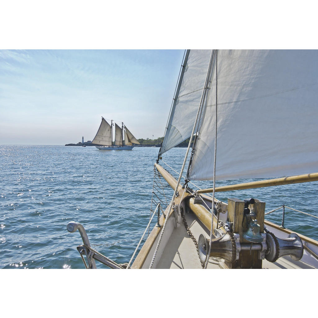 Komar Fototapete Sailing