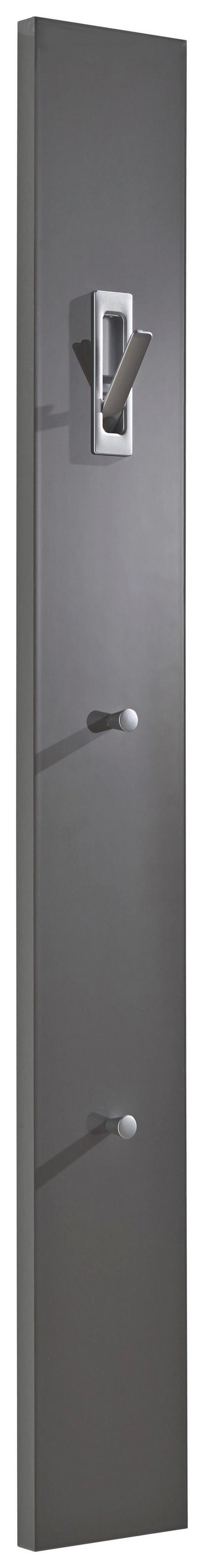 GARDEROBENPANEEL 15/120/2.5 cm - Grau, Design, Holzwerkstoff (15/120/2.5cm)