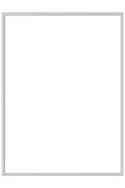 BILDERRAHMEN in Silberfarben - Silberfarben, Metall (31.2/43.5cm)