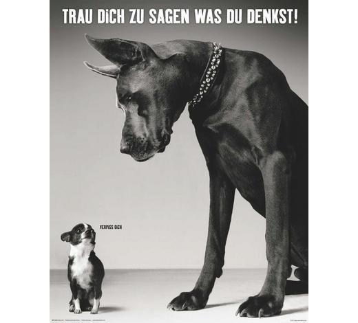 DEKOPANEEL - Schwarz/Weiß, Basics, Holzwerkstoff (40/50cm) - Reinders Next