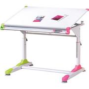 JUGENDSCHREIBTISCH Grün, Weiß, Pink  - Pink/Weiß, KONVENTIONELL, Metall (100/69-84/66cm) - Carryhome