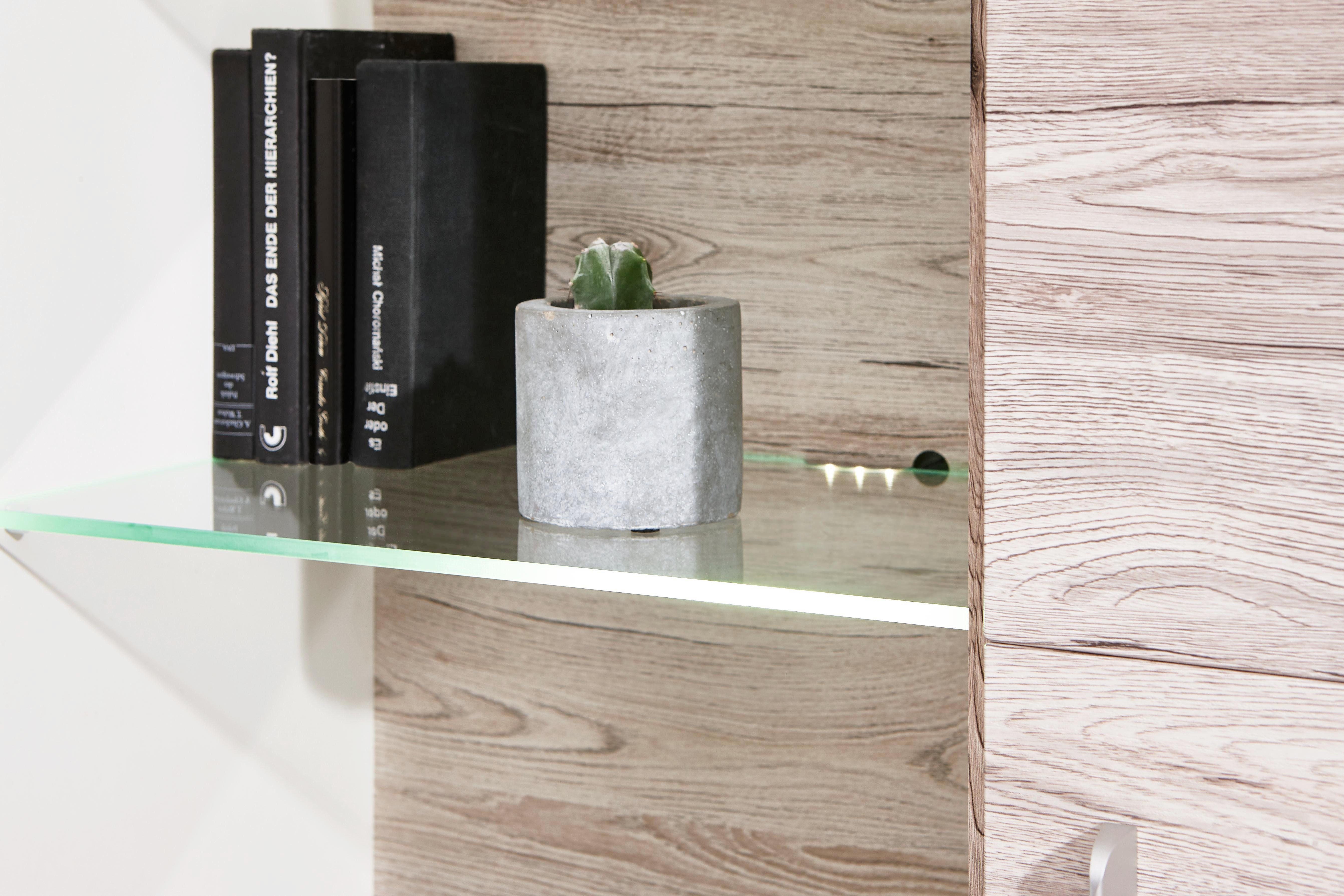 REGAL ZA DNEVNI BORAVAK - Boja aluminijuma/Crna, Dizajnerski, Plastika/Staklo (330/209/52cm) - Carryhome