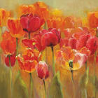 Blumen, Landschaft & Natur KEILRAHMENBILD - Multicolor, Basics, Holz/Textil (30/30/3,5cm) - EUROGRAPHICS